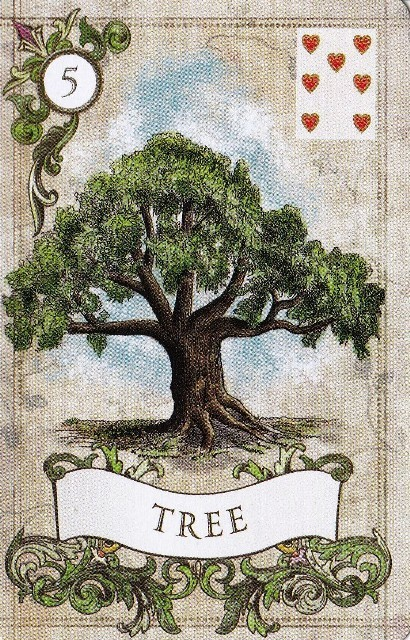 oldlenormand05tree.jpg